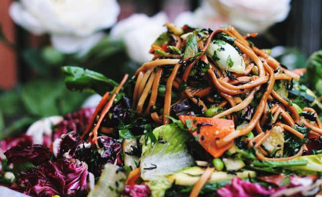 que significa ser vegetariano y el vegetarianismo ?