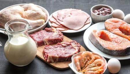 Que son los alimentos que contienen proteínas ?