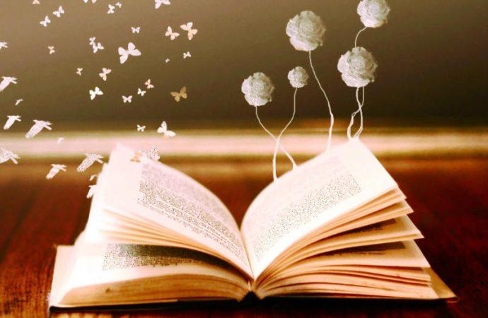 un reporte sobre la  lectura y sus metas y funciones