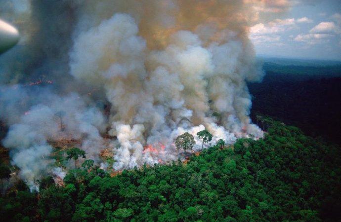 Amazonia dispara cataclísmico hundimiento de Sao Paulo en la oscuridad